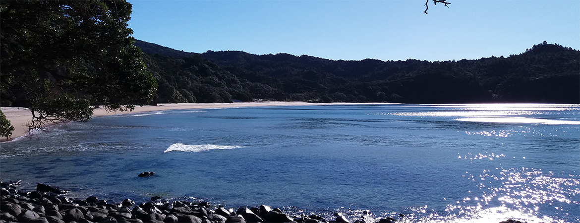The Coromandel : a small peninsula with a big character