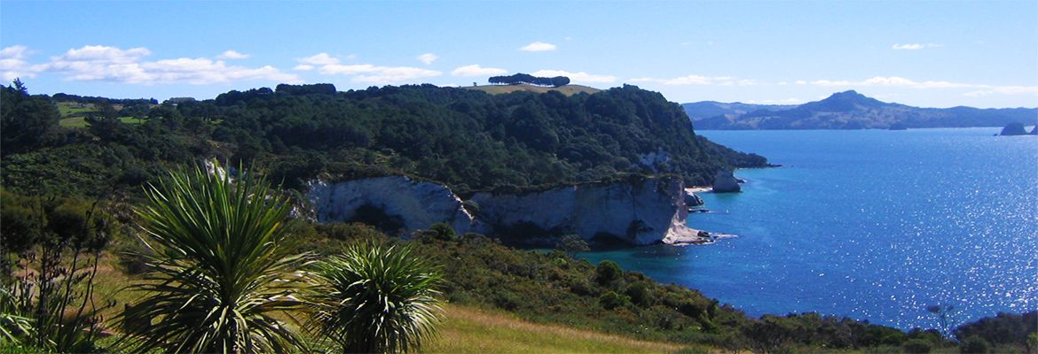 Coromandel Peninsula Beaches