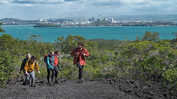 Hiking on Rangitoto Island