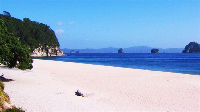 Hahei Beach Coromandel