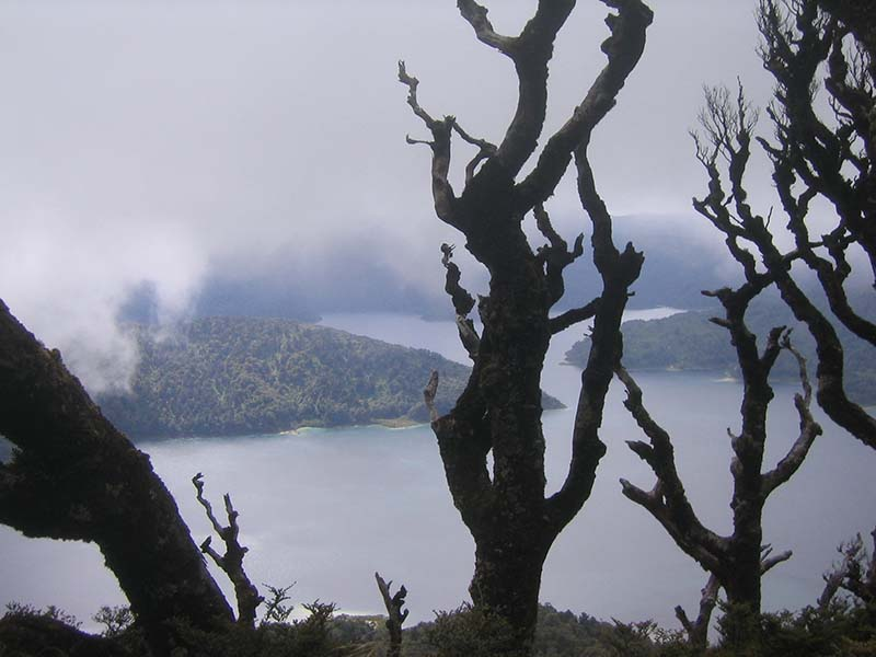 Lake Waikaremoana Great Walk - Nueva Zelanda