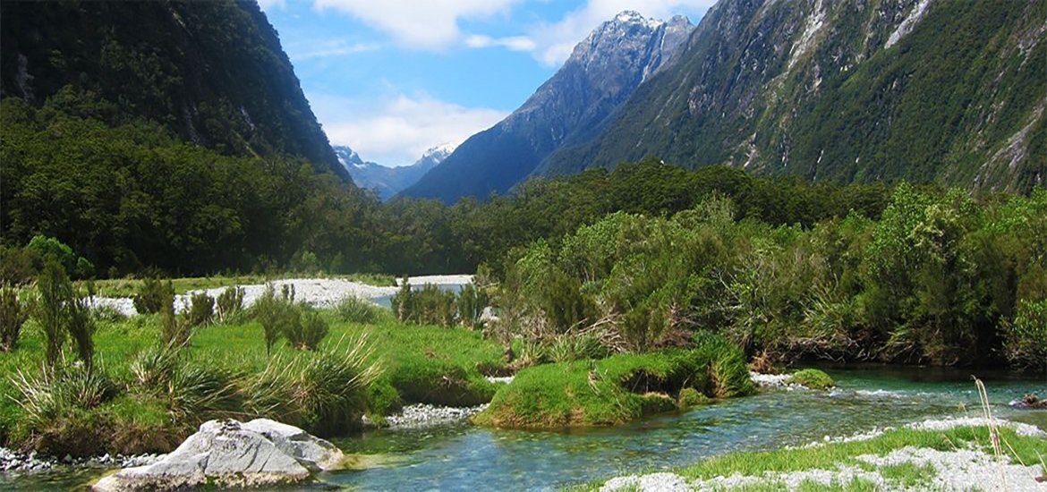 4 Day Fiordland Soul Food