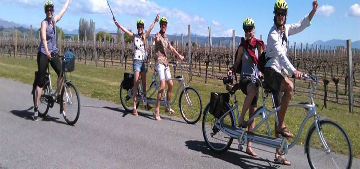 Tour del vino in bicicletta