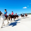 horse riding pakiri beach